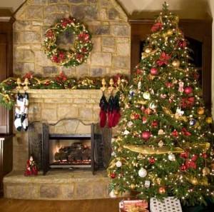 fraser-christmas-tree